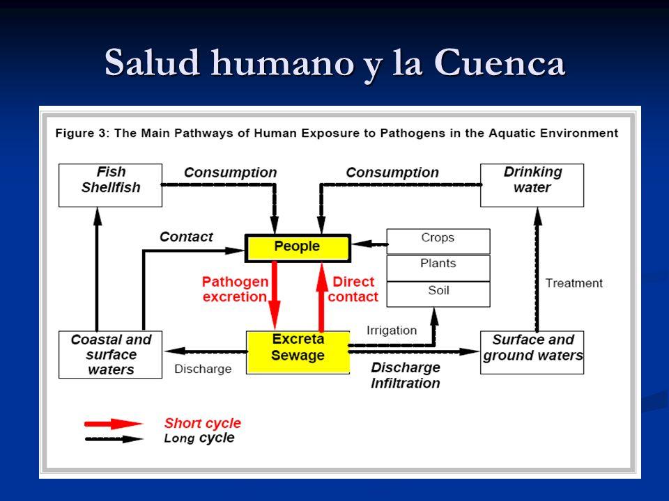 Salud humano y la Cuenca