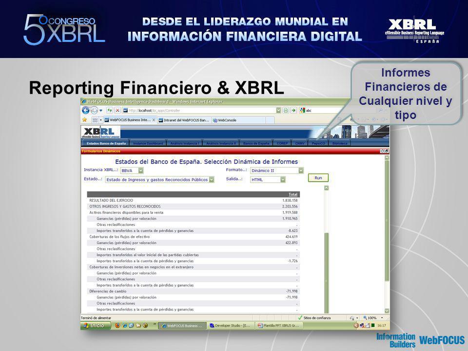 Reporting Financiero & XBRL Informes Financieros de Cualquier nivel y tipo