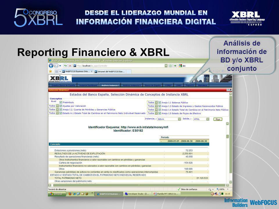 Reporting Financiero & XBRL Análisis de información de BD y/o XBRL conjunto