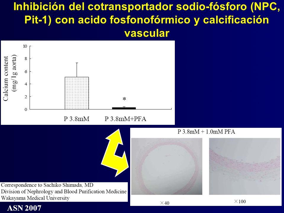 Inhibición del cotransportador sodio-fósforo (NPC, Pit-1) con acido fosfonofórmico y calcificación vascular ASN 2007