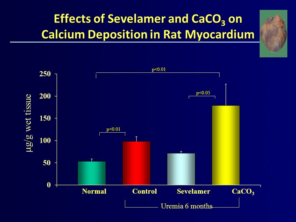 Effects of Sevelamer and CaCO 3 on Calcium Deposition in Rat Myocardium Uremia 6 months g/g wet tissue Normal Control Sevelamer CaCO 3 p<0.05 p<0.01