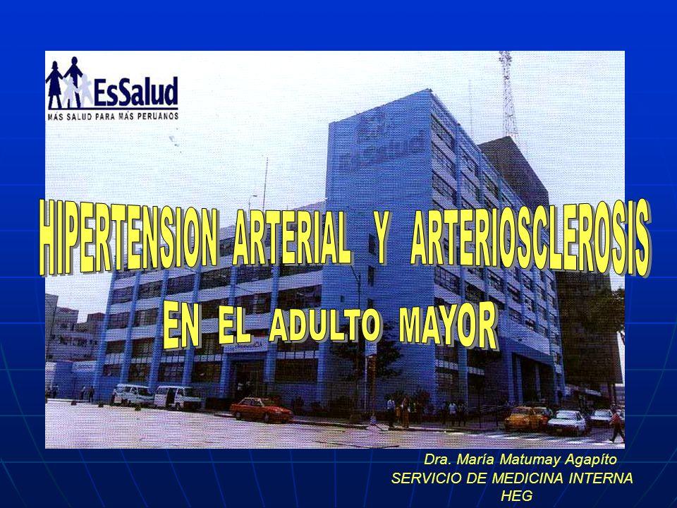 Dra. María Matumay Agapíto SERVICIO DE MEDICINA INTERNA HEG
