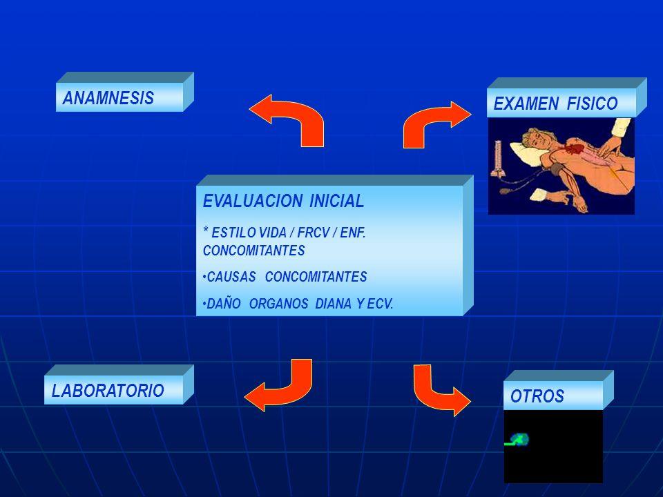 ANAMNESIS OTROS EXAMEN FISICO EVALUACION INICIAL * ESTILO VIDA / FRCV / ENF. CONCOMITANTES CAUSAS CONCOMITANTES DAÑO ORGANOS DIANA Y ECV. LABORATORIO