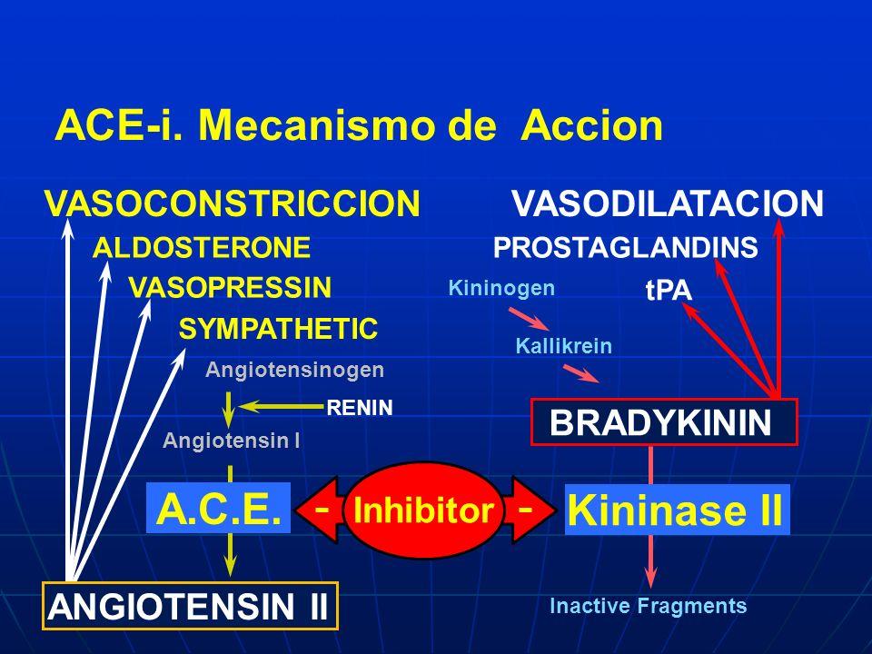 VASOCONSTRICCIONVASODILATACION Kininogen Kallikrein Inactive Fragments Angiotensinogen Angiotensin I RENIN Kininase II Inhibitor ALDOSTERONE SYMPATHET
