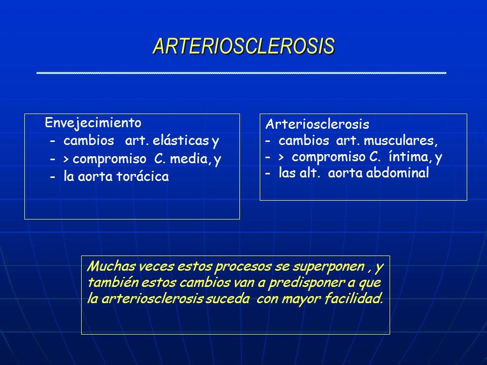ARTERIOSCLEROSIS Envejecimiento - cambios art. elásticas y - > compromiso C. media, y - la aorta torácica Arteriosclerosis - cambios art. musculares,