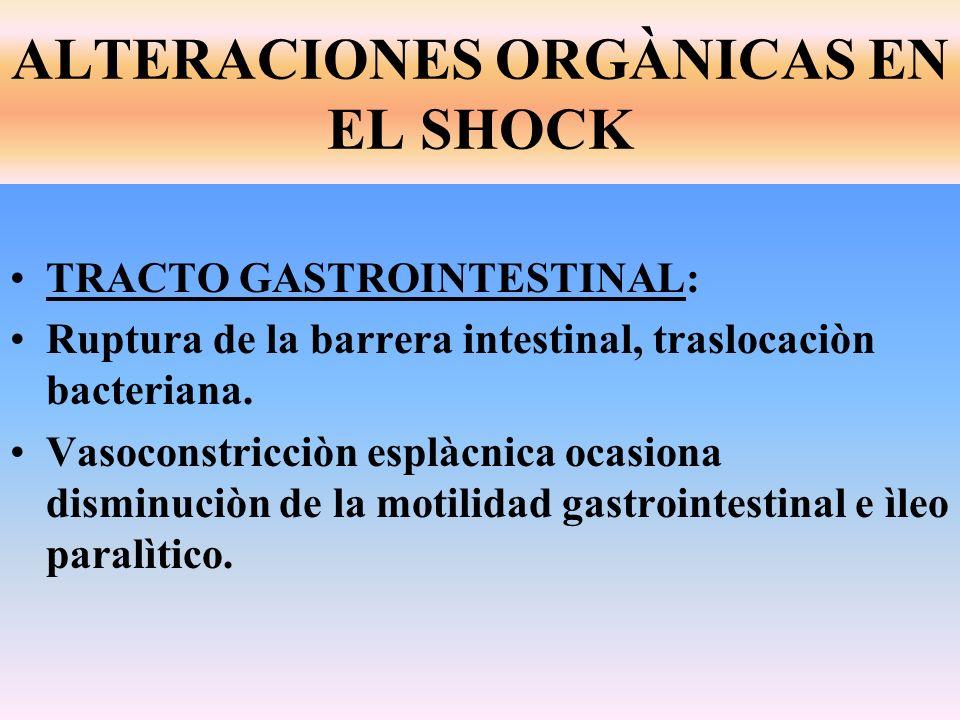 ALTERACIONES ORGÀNICAS EN EL SHOCK TRACTO GASTROINTESTINAL: Ruptura de la barrera intestinal, traslocaciòn bacteriana. Vasoconstricciòn esplàcnica oca
