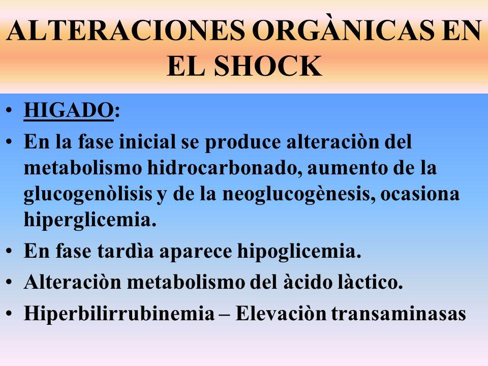 HIGADO: En la fase inicial se produce alteraciòn del metabolismo hidrocarbonado, aumento de la glucogenòlisis y de la neoglucogènesis, ocasiona hiperg