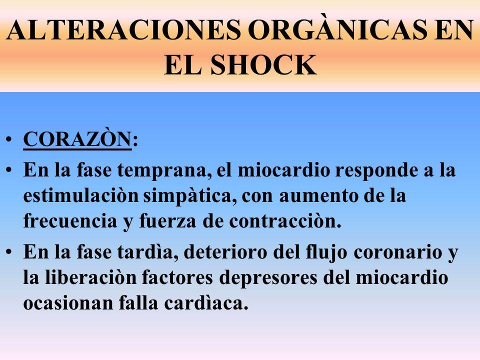 CORAZÒN: En la fase temprana, el miocardio responde a la estimulaciòn simpàtica, con aumento de la frecuencia y fuerza de contracciòn. En la fase tard