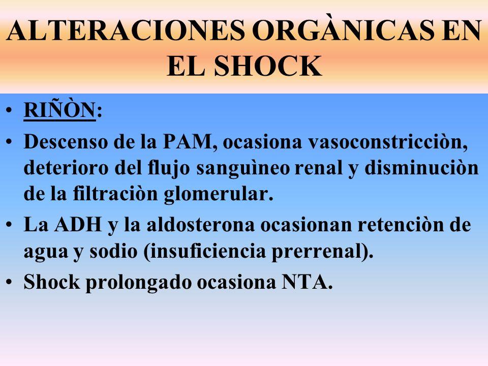 RIÑÒN: Descenso de la PAM, ocasiona vasoconstricciòn, deterioro del flujo sanguìneo renal y disminuciòn de la filtraciòn glomerular. La ADH y la aldos