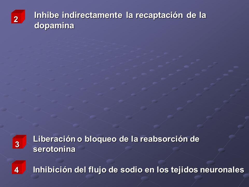 Inhibe indirectamente la recaptación de la dopamina Liberación o bloqueo de la reabsorción de serotonina Inhibición del flujo de sodio en los tejidos