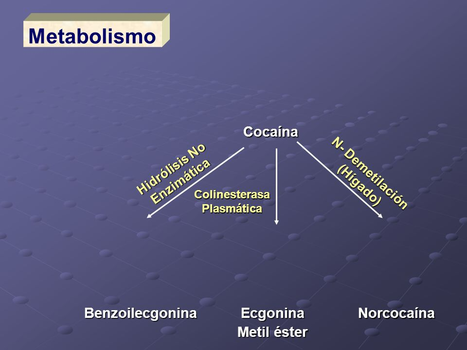 Cocaína Ecgonina Metil éster Norcocaína Benzoilecgonina Hidrólisis No Enzimática Colinesterasa Plasmática N- Demetilación (Hígado) Metabolismo