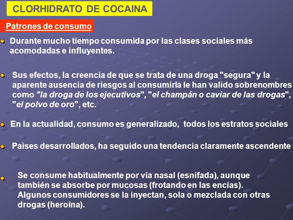 CLORHIDRATO DE COCAINA -Patrones de consumo Se consume habitualmente por vía nasal (esnifada), aunque también se absorbe por mucosas (frotando en las