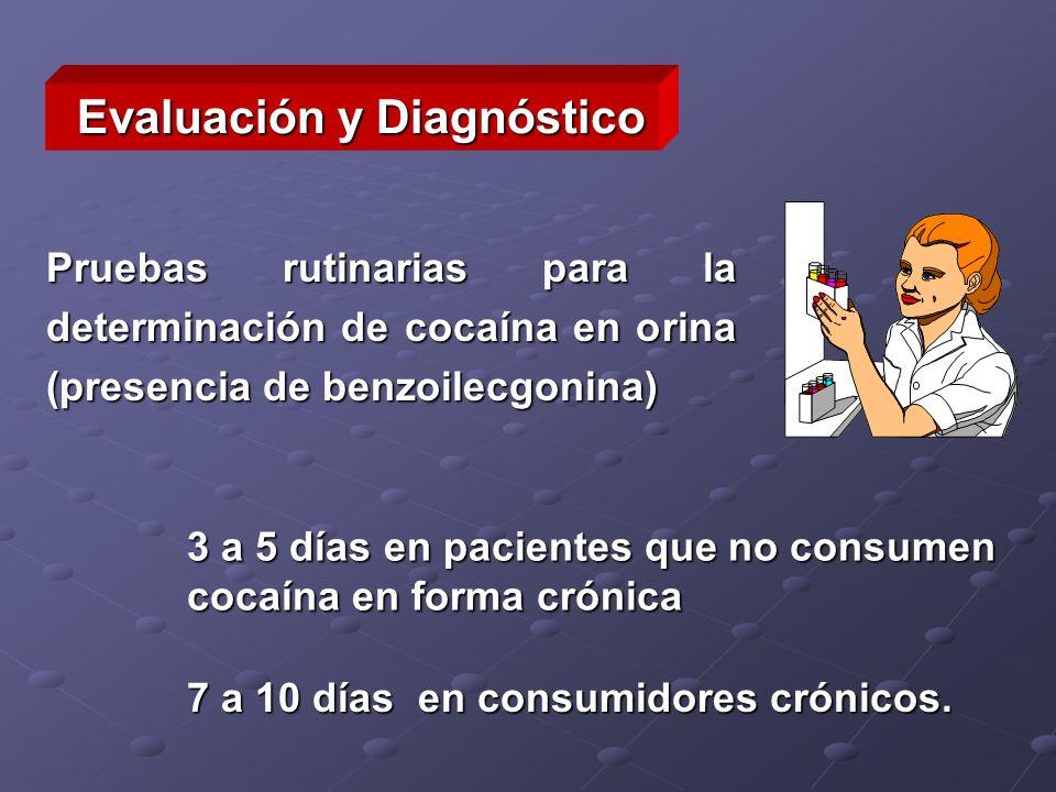 Evaluación y Diagnóstico Pruebas rutinarias para la determinación de cocaína en orina (presencia de benzoilecgonina) 3 a 5 días en pacientes que no co