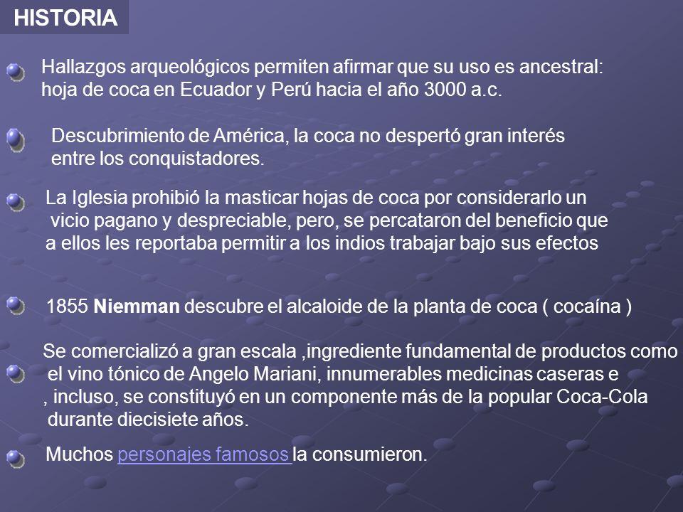 HISTORIA Hallazgos arqueológicos permiten afirmar que su uso es ancestral: hoja de coca en Ecuador y Perú hacia el año 3000 a.c. Descubrimiento de Amé