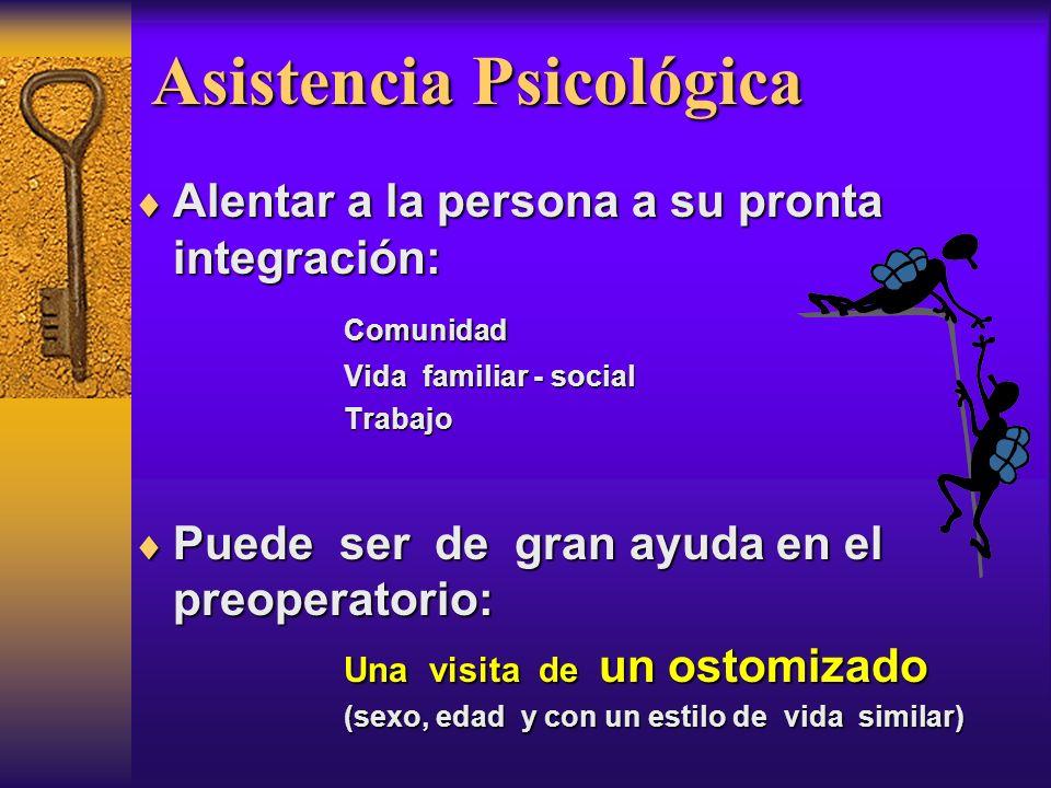 Asistencia Psicológica Alentar a la persona a su pronta integración: Alentar a la persona a su pronta integración: Comunidad Comunidad Vida familiar -