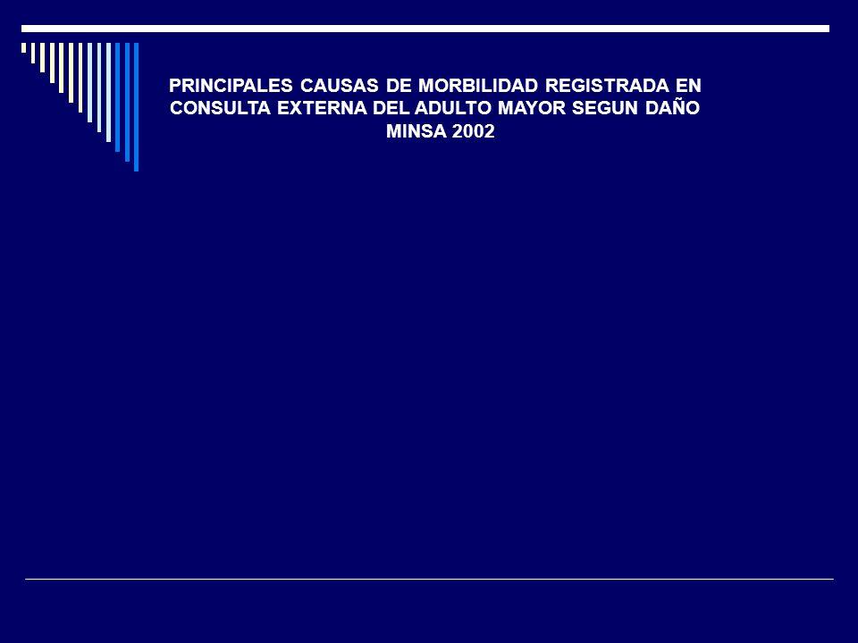 PRINCIPALES CAUSAS DE MORBILIDAD REGISTRADA EN CONSULTA EXTERNA DEL ADULTO MAYOR SEGUN DAÑO MINSA 2002