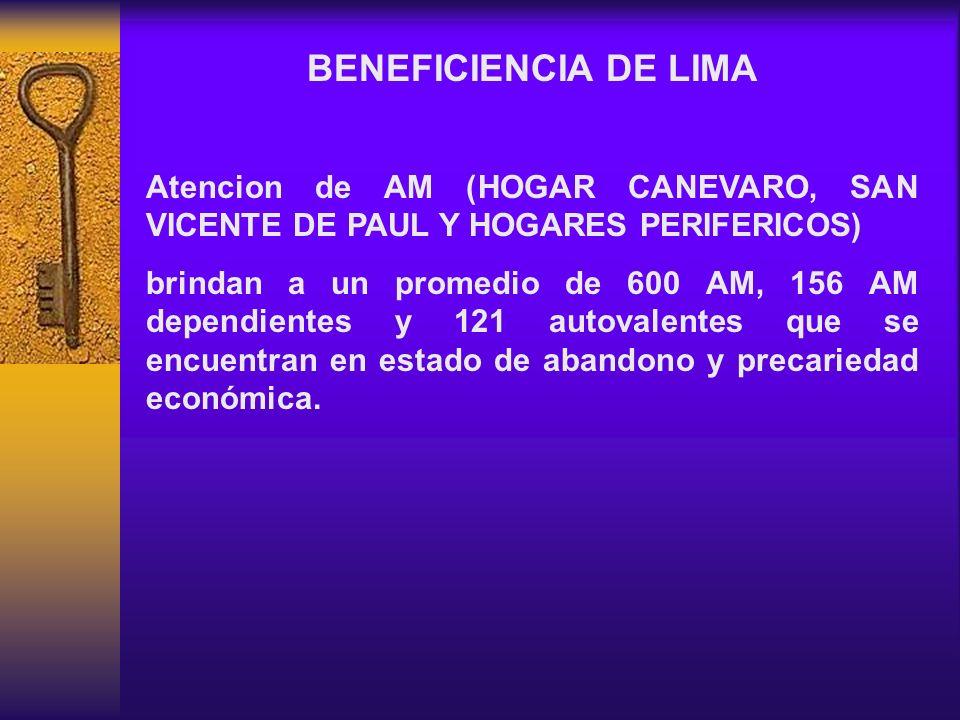 BENEFICIENCIA DE LIMA Atencion de AM (HOGAR CANEVARO, SAN VICENTE DE PAUL Y HOGARES PERIFERICOS) brindan a un promedio de 600 AM, 156 AM dependientes