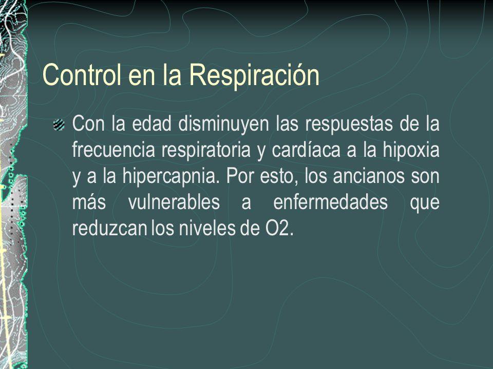 Control en la Respiración Con la edad disminuyen las respuestas de la frecuencia respiratoria y cardíaca a la hipoxia y a la hipercapnia. Por esto, lo