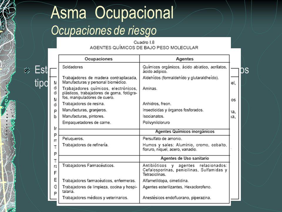 Asma Ocupacional Ocupaciones de riesgo Esta enfermedad se asocia a la inhalación de dos tipos de sustancias: