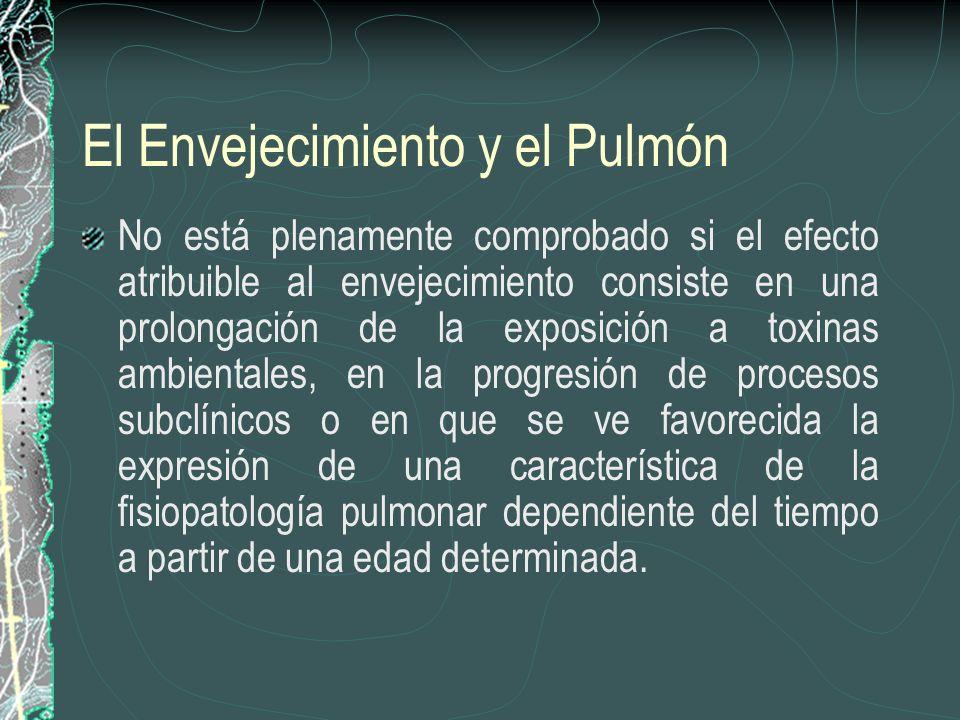El Envejecimiento y el Pulmón No está plenamente comprobado si el efecto atribuible al envejecimiento consiste en una prolongación de la exposición a