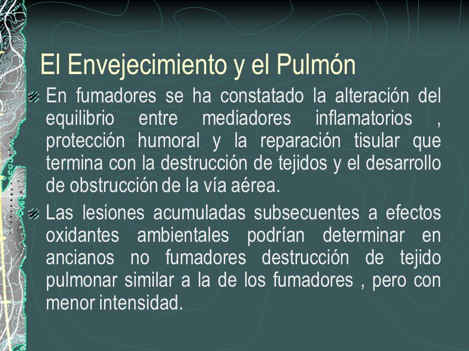El Envejecimiento y el Pulmón En fumadores se ha constatado la alteración del equilibrio entre mediadores inflamatorios, protección humoral y la repar