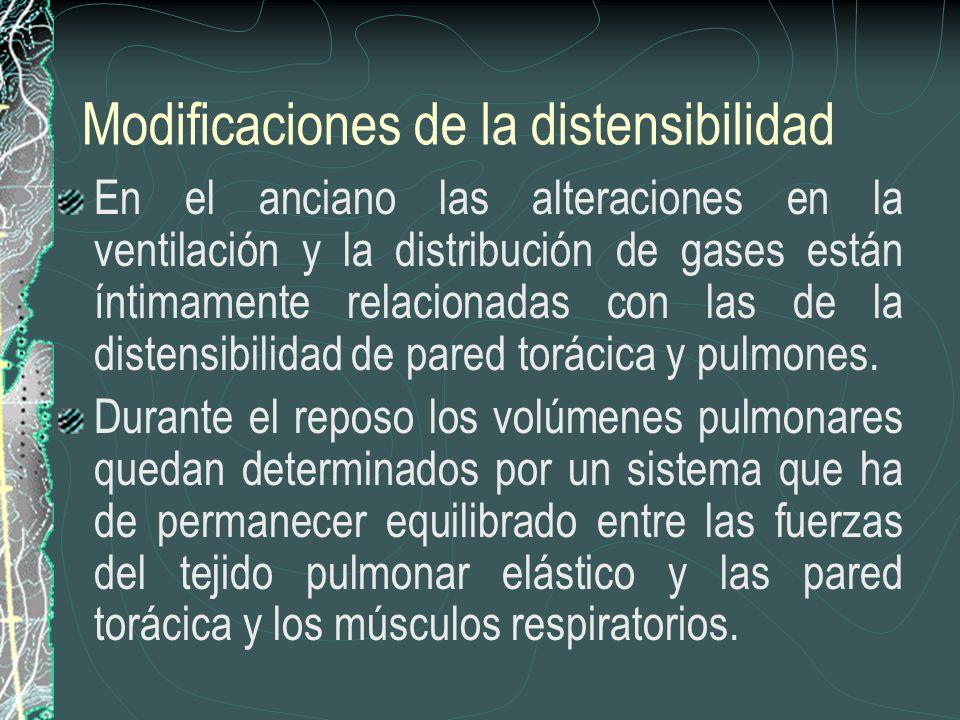 Modificaciones de la distensibilidad En el anciano las alteraciones en la ventilación y la distribución de gases están íntimamente relacionadas con la