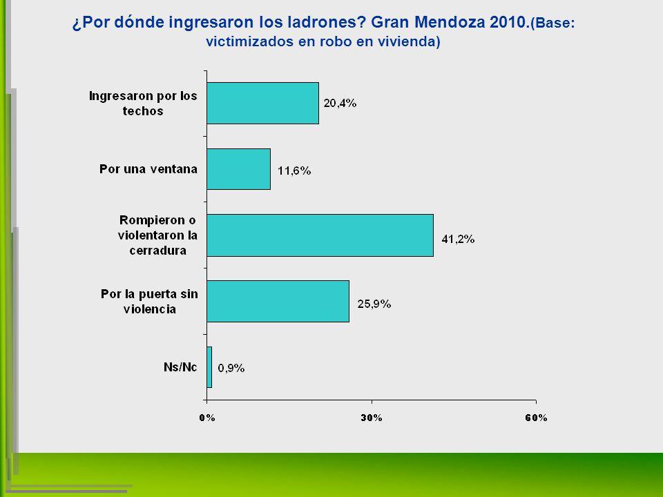 ¿Por dónde ingresaron los ladrones Gran Mendoza 2010. (Base: victimizados en robo en vivienda)