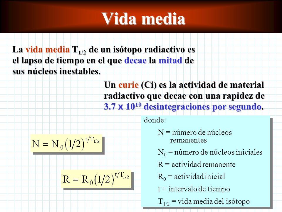 Vida media La vida media T 1/2 de un isótopo radiactivo es el lapso de tiempo en el que decae la mitad de sus núcleos inestables.