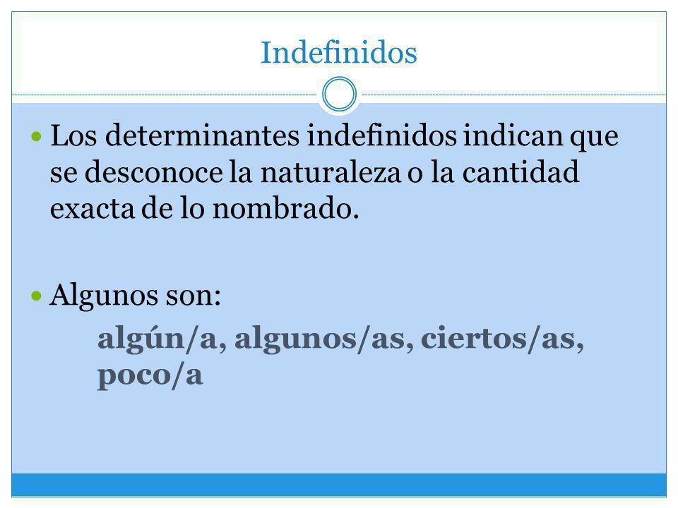 Indefinidos Los determinantes indefinidos indican que se desconoce la naturaleza o la cantidad exacta de lo nombrado. Algunos son: algún/a, algunos/as
