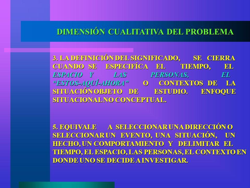 DIMENSIÓN CUALITATIVA DEL PROBLEMA ¿CUÁNDO UN PROBLEMA PUEDE SER OBJETO DE ESTUDIO EN LO CUALITATIVO? 2. EL SIGNIFICADO ES UNA DEMARCACIÓN CONCEPTUAL