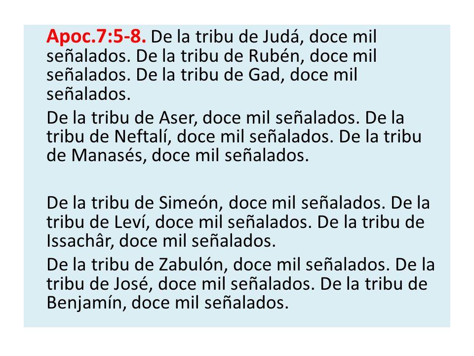 Apoc.7:5-8. De la tribu de Judá, doce mil señalados. De la tribu de Rubén, doce mil señalados. De la tribu de Gad, doce mil señalados. De la tribu de