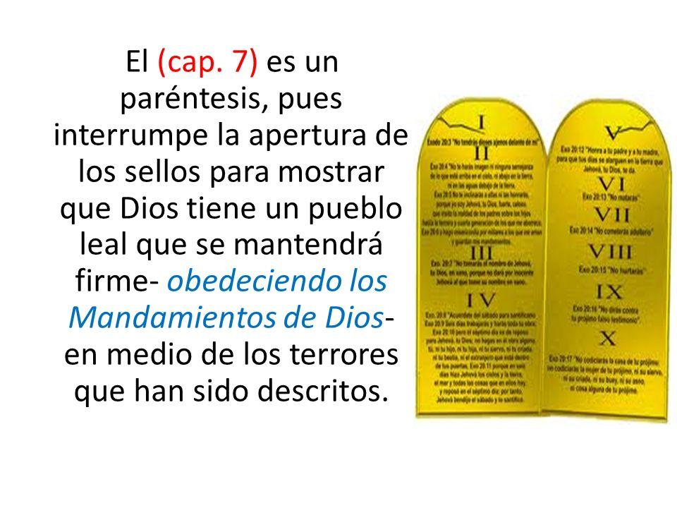 El (cap. 7) es un paréntesis, pues interrumpe la apertura de los sellos para mostrar que Dios tiene un pueblo leal que se mantendrá firme- obedeciendo