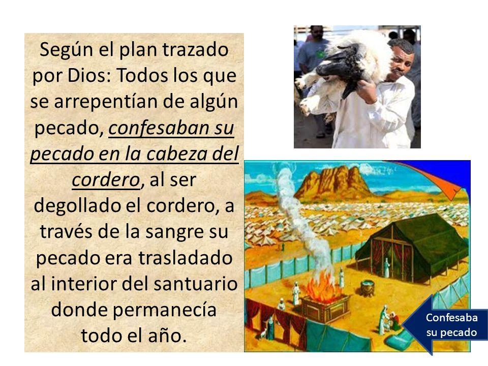 Según el plan trazado por Dios: Todos los que se arrepentían de algún pecado, confesaban su pecado en la cabeza del cordero, al ser degollado el corde