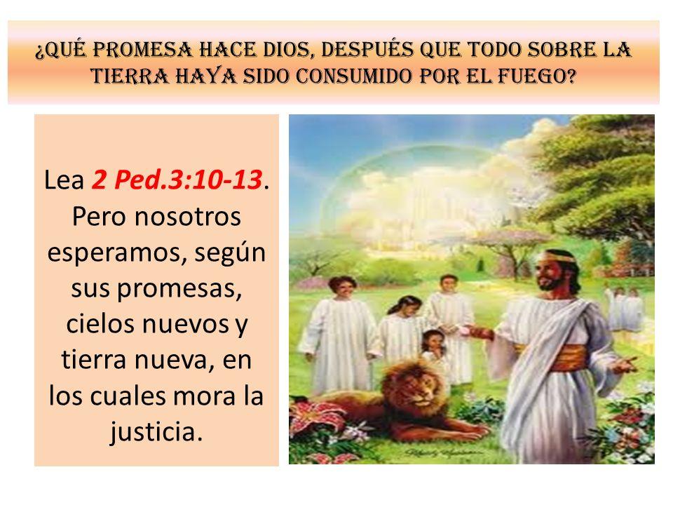 ¿Qué promesa hace Dios, después que todo sobre la tierra haya sido consumido por el fuego? Lea 2 Ped.3:10-13. Pero nosotros esperamos, según sus prome