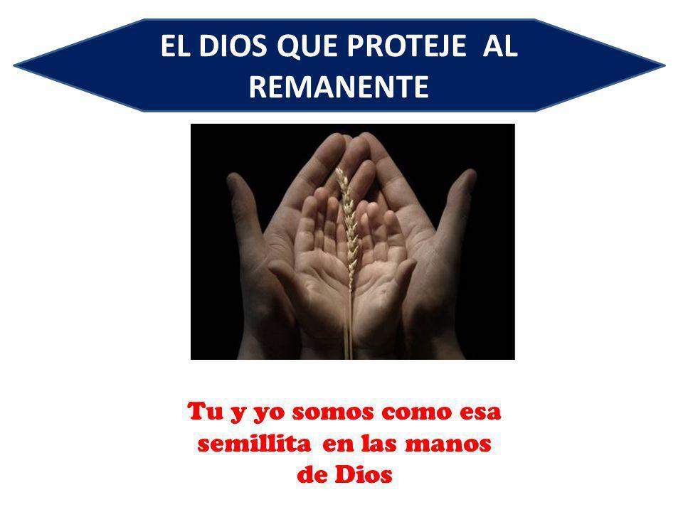 EL DIOS QUE PROTEJE AL REMANENTE Tu y yo somos como esa semillita en las manos de Dios