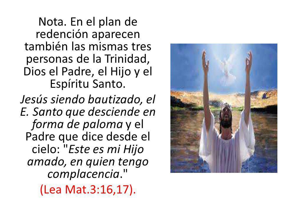 Nota. En el plan de redención aparecen también las mismas tres personas de la Trinidad, Dios el Padre, el Hijo y el Espíritu Santo. Jesús siendo bauti