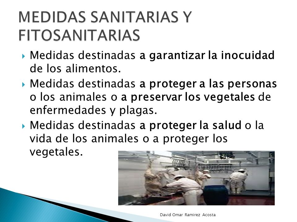 Medidas destinadas a garantizar la inocuidad de los alimentos. Medidas destinadas a proteger a las personas o los animales o a preservar los vegetales