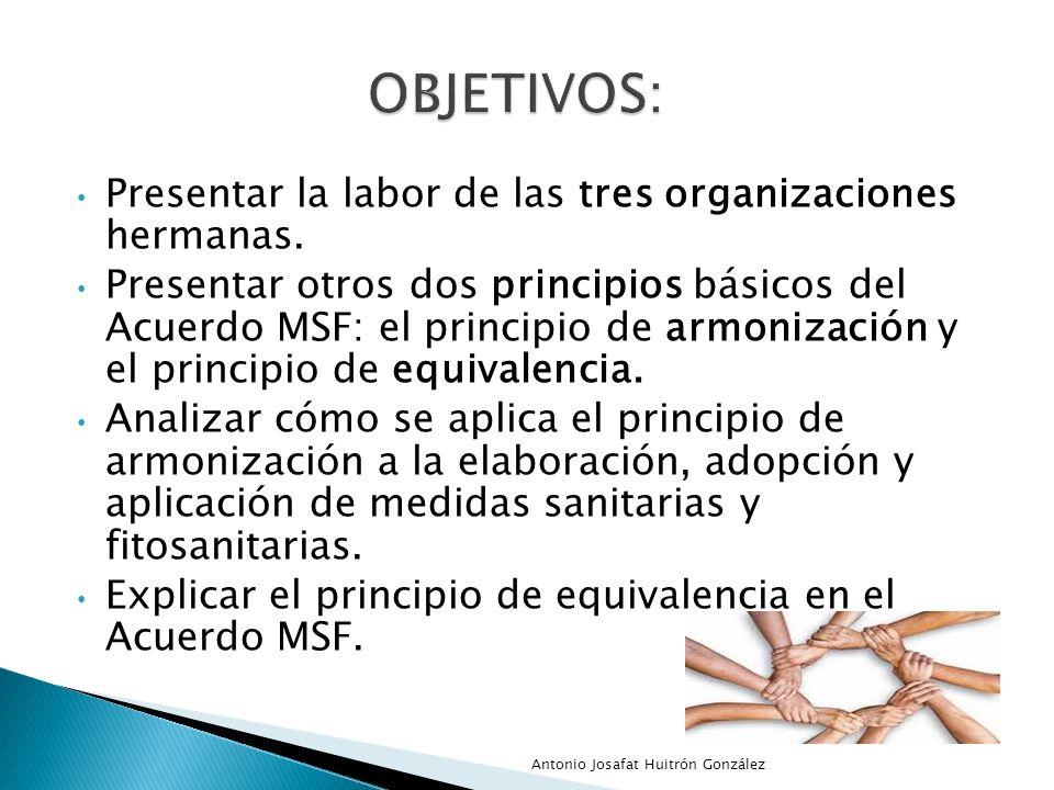 Presentar la labor de las tres organizaciones hermanas. Presentar otros dos principios básicos del Acuerdo MSF: el principio de armonización y el prin