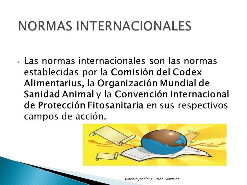 Las normas internacionales son las normas establecidas por la Comisión del Codex Alimentarius, la Organización Mundial de Sanidad Animal y la Convenci