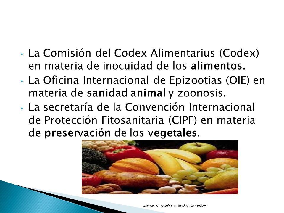 La Comisión del Codex Alimentarius (Codex) en materia de inocuidad de los alimentos. La Oficina Internacional de Epizootias (OIE) en materia de sanida