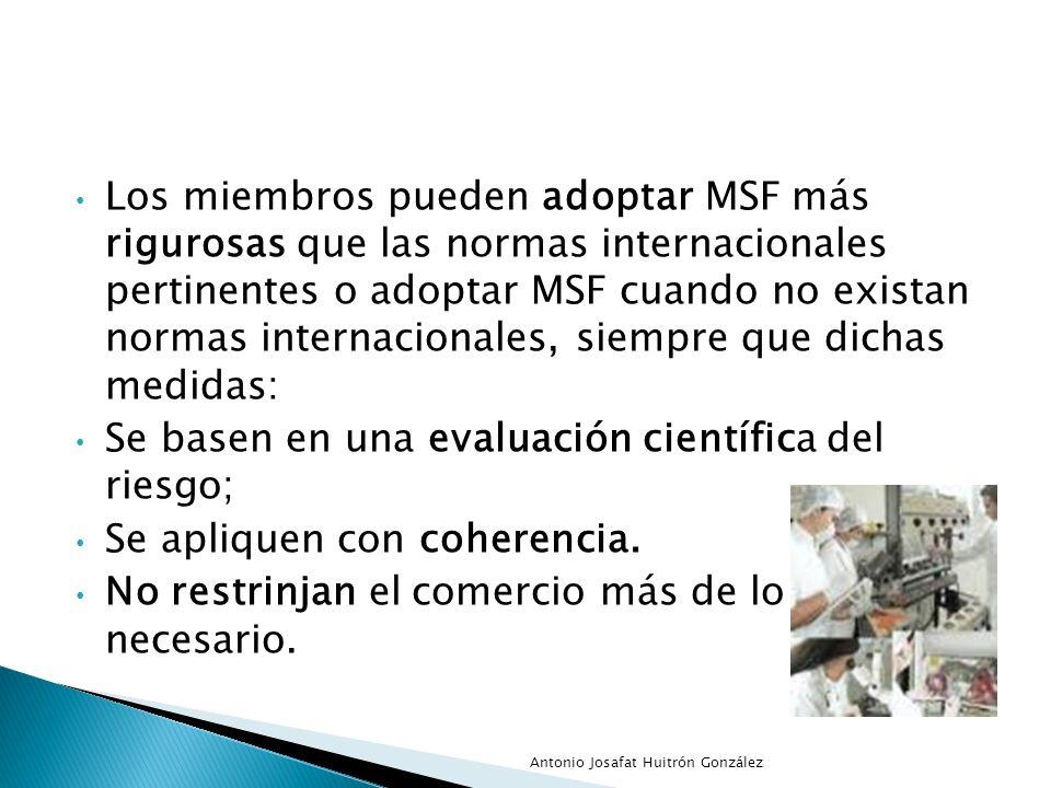 Los miembros pueden adoptar MSF más rigurosas que las normas internacionales pertinentes o adoptar MSF cuando no existan normas internacionales, siemp