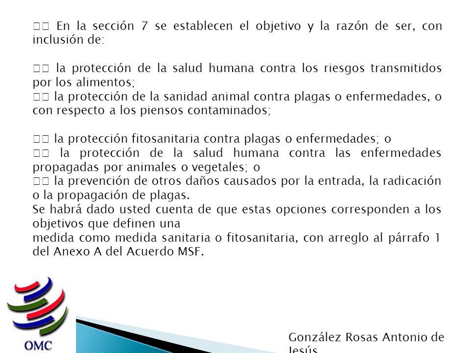 En la sección 7 se establecen el objetivo y la razón de ser, con inclusión de: la protección de la salud humana contra los riesgos transmitidos por lo