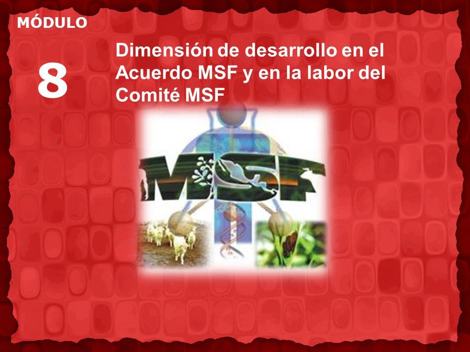 Dimensión de desarrollo en el Acuerdo MSF y en la labor del Comité MSF MÓDULO 8