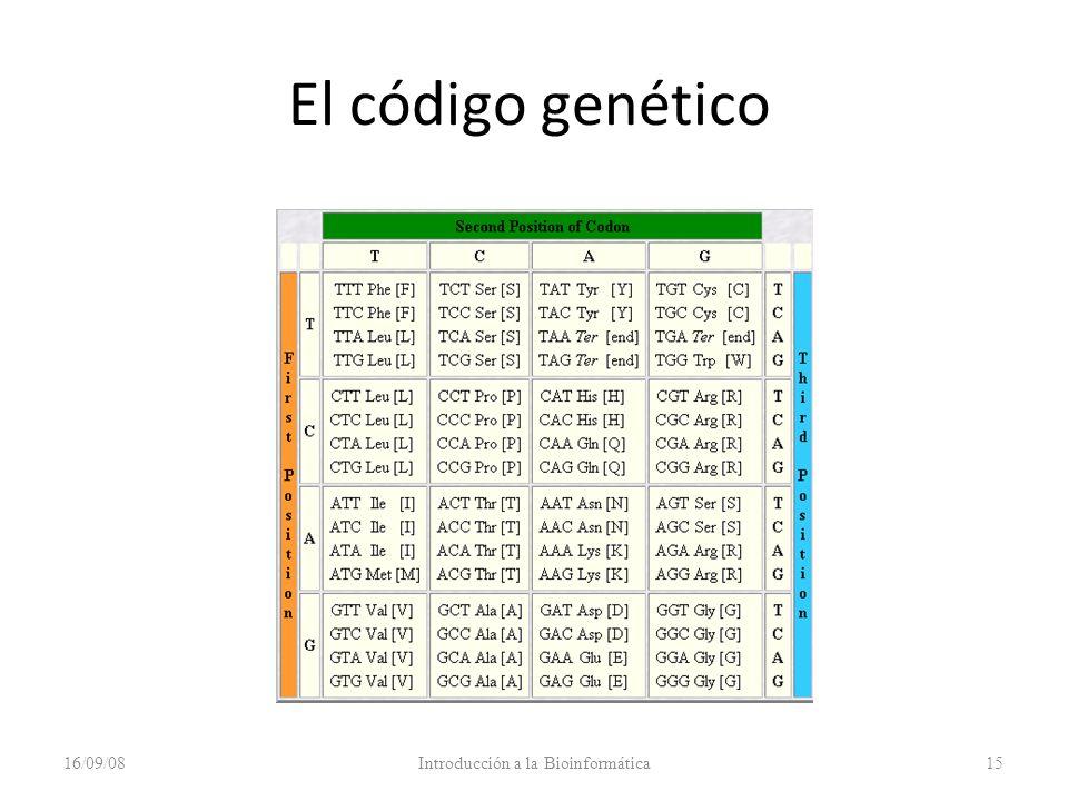 El código genético 16/09/08Introducción a la Bioinformática15
