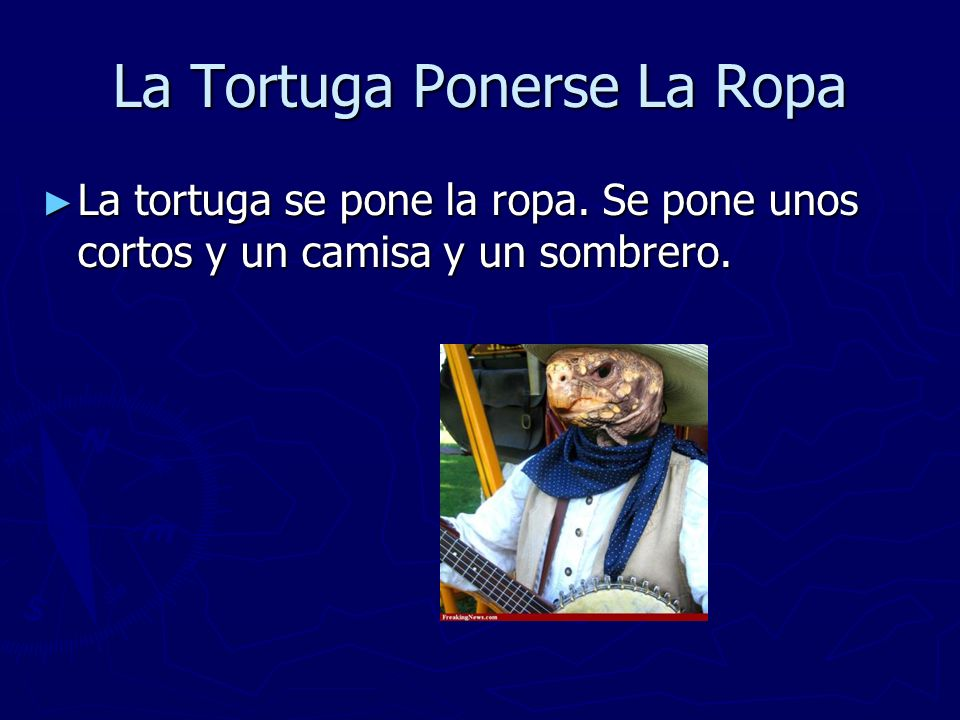 La Tortuga Ponerse La Ropa La tortuga se pone la ropa. Se pone unos cortos y un camisa y un sombrero. La tortuga se pone la ropa. Se pone unos cortos