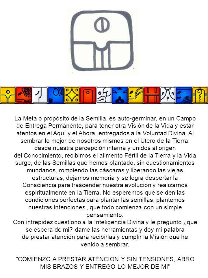Los Siete Oráculos Perfectos 117.