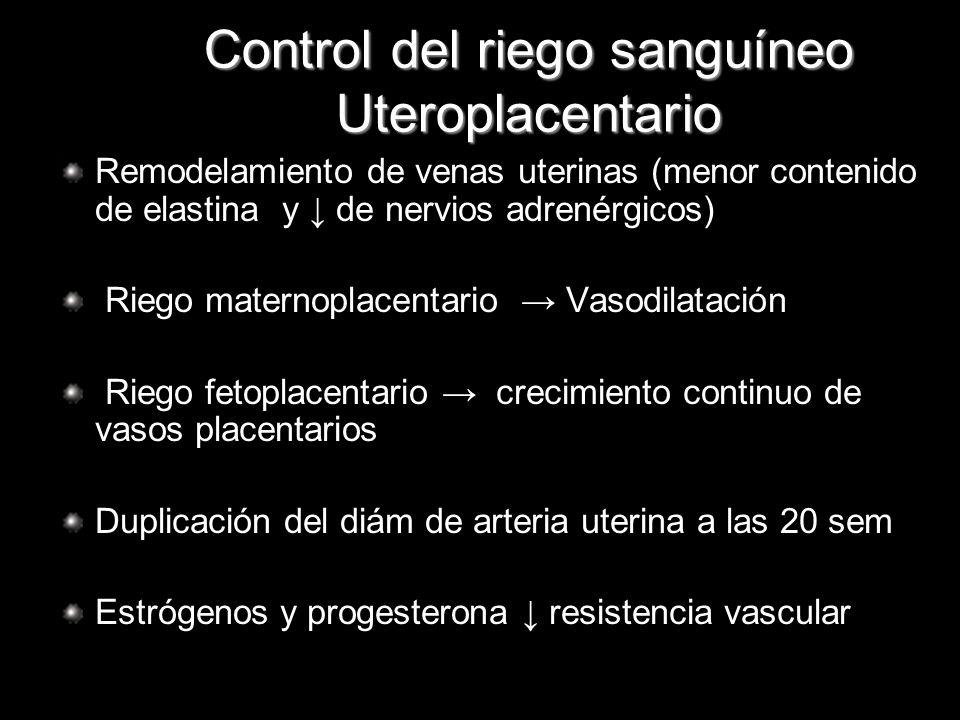 Control del riego sanguíneo Uteroplacentario Remodelamiento de venas uterinas (menor contenido de elastina y de nervios adrenérgicos) Riego maternopla