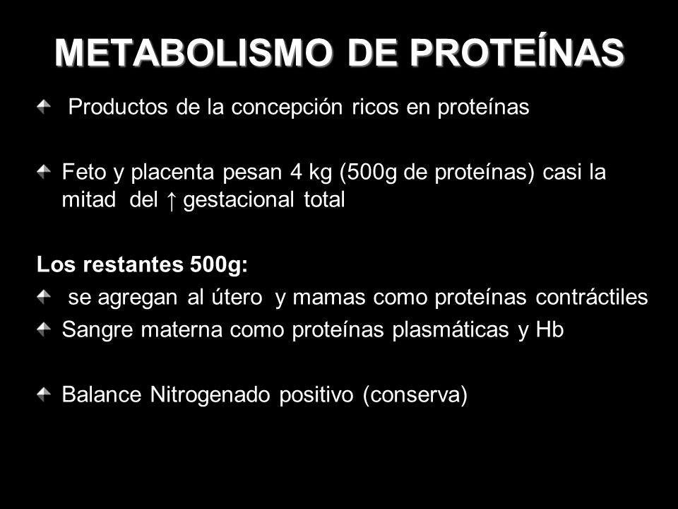 METABOLISMO DE PROTEÍNAS Productos de la concepción ricos en proteínas Feto y placenta pesan 4 kg (500g de proteínas) casi la mitad del gestacional to