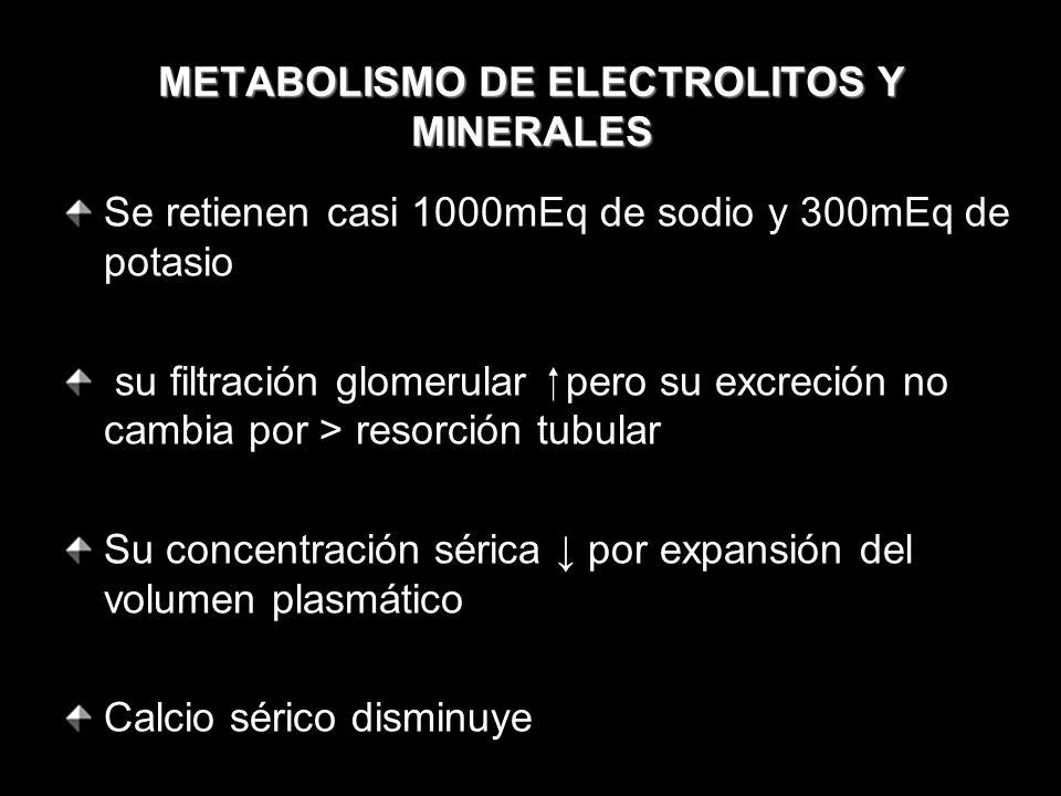 METABOLISMO DE ELECTROLITOS Y MINERALES Se retienen casi 1000mEq de sodio y 300mEq de potasio su filtración glomerular pero su excreción no cambia por