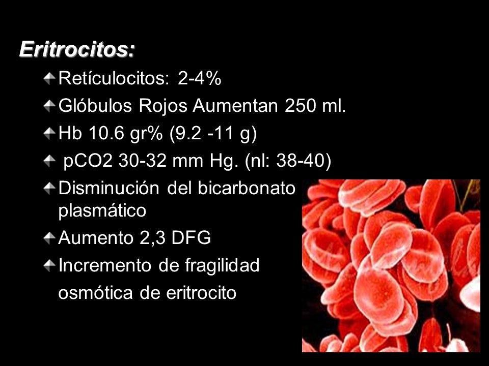 Eritrocitos: Retículocitos: 2-4% Glóbulos Rojos Aumentan 250 ml. Hb 10.6 gr% (9.2 -11 g) pCO2 30-32 mm Hg. (nl: 38-40) Disminución del bicarbonato pla